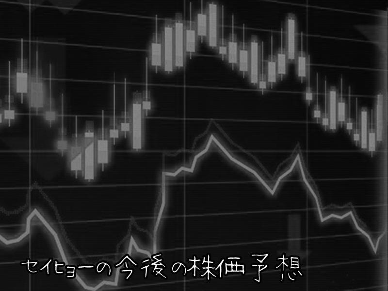 【超初心者向け】セイヒョーの株の購入の仕方と株主優待について